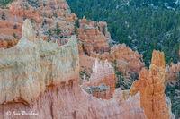 Hoodoos, Rim, Bryce Canyon Amphitheatre, Bryce Canyon National Park, Utah, USA, Spring