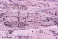 Svinafellsjokull Glacier, ice, crevasses, guide, hikers, Vatnajokull National Park, Ring Road, Kirkjubaejarklaustur, South Iceland, summer