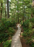 Boardwalk,Schooner Cove,Pacific Rim National Park,Long Beach,Vancouver Island,British Columbia,Canada,West Coast,Summer,Travel