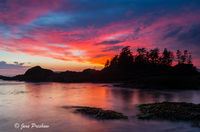 Frank Island, Chesterman Beach, Tofino, Vancouver Island, British Columbia, Canada, Sunset, Summer, Pacific Ocean
