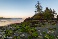 green algae, beach, low tide, Long Beach, Pacific Rim National Park, Vancouver Island, British Columbia, Pacific ocean, Canada, summer, sunset