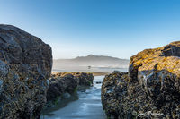 surfing, waves, beach, Pacific ocean, Vancouver Island, British Columbia, summer