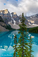 Turquoise Blue, Mount Bowlen, Mount Tonsa, Moraine lake, sunrise, Valley of the Ten Peaks, Banff National Park, Alberta, Canada, pine trees, summer