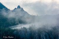Mount Habrich, Mist, Trees, Squamish, British Columbia, Howe Sound, Canada