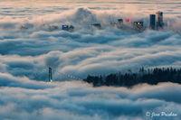 fog, Lions Gate bridge, Stanley Park, buildings, downtown Vancouver, British Columbia, Canada, sunrise, winter