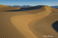Mesquite Flat Sand Dunes, Stovepipe Wells, Death Valley National Park, Sunrise, California, USA