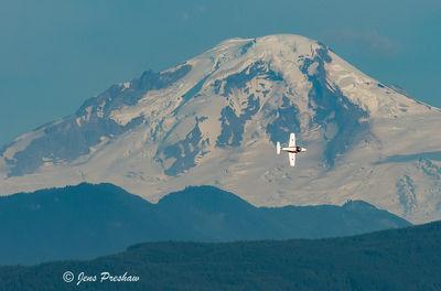 Lone Snowbird and Mount Baker