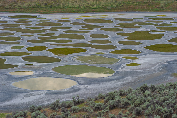 Spotted Lake, Kliluk, Osoyoos, Okanagan Valley, British Columbia, Canada, Summer, photo