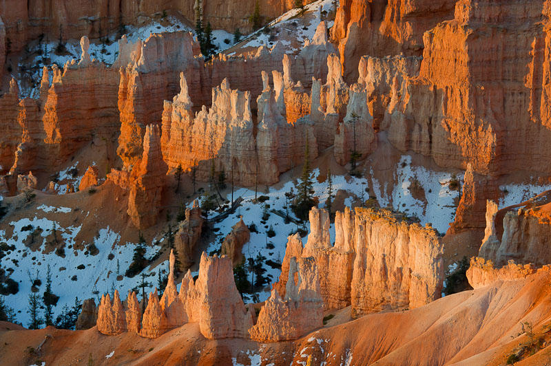 Hoodoos, Sunrise, Bryce Canyon National Park, Utah, USA, photo