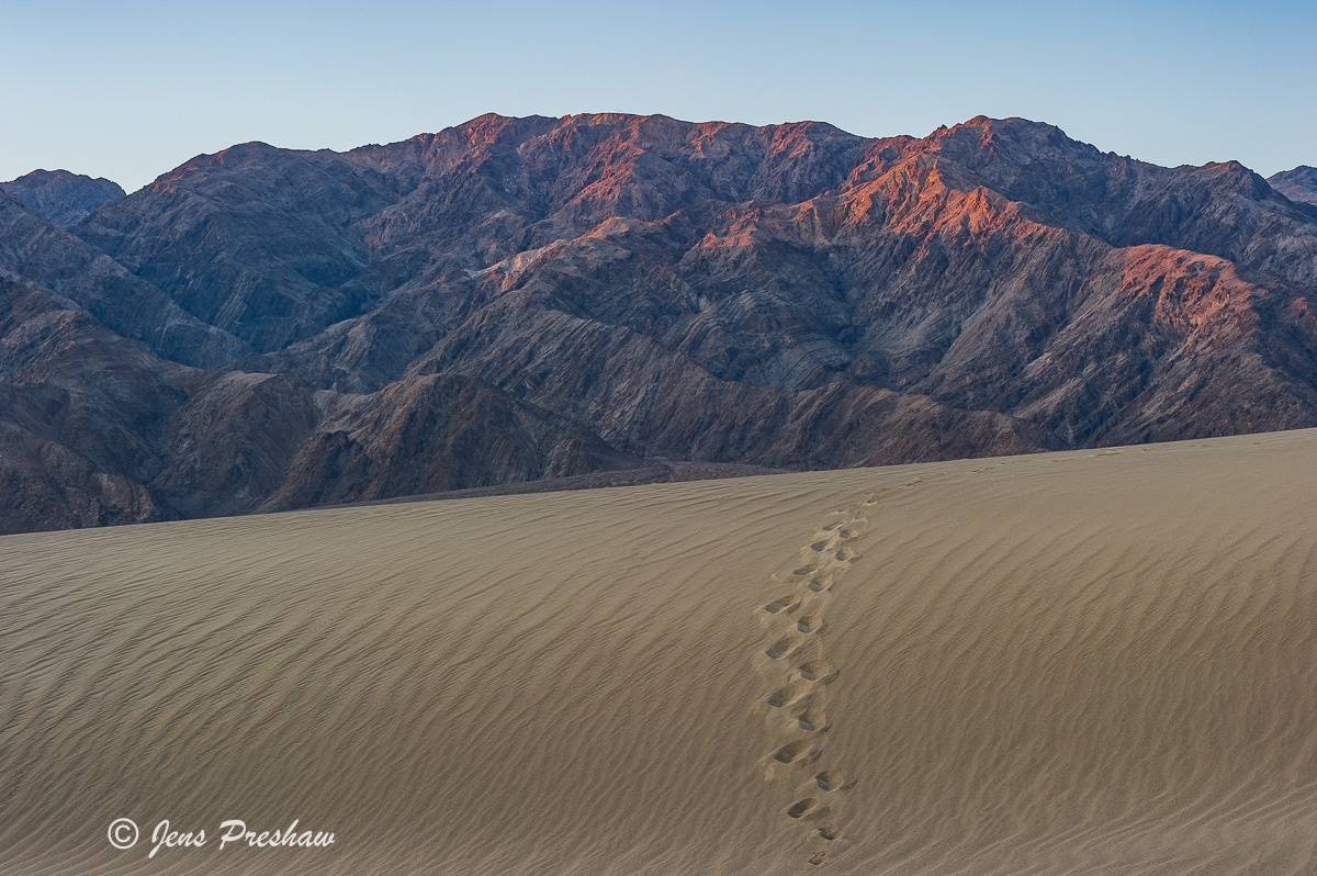 Footsteps, Mesquite Flats Sand Dunes, Mountains, Sunrise, Alpenglow, Death Valley National Park, Stovepipe Wells, California, USA, photo