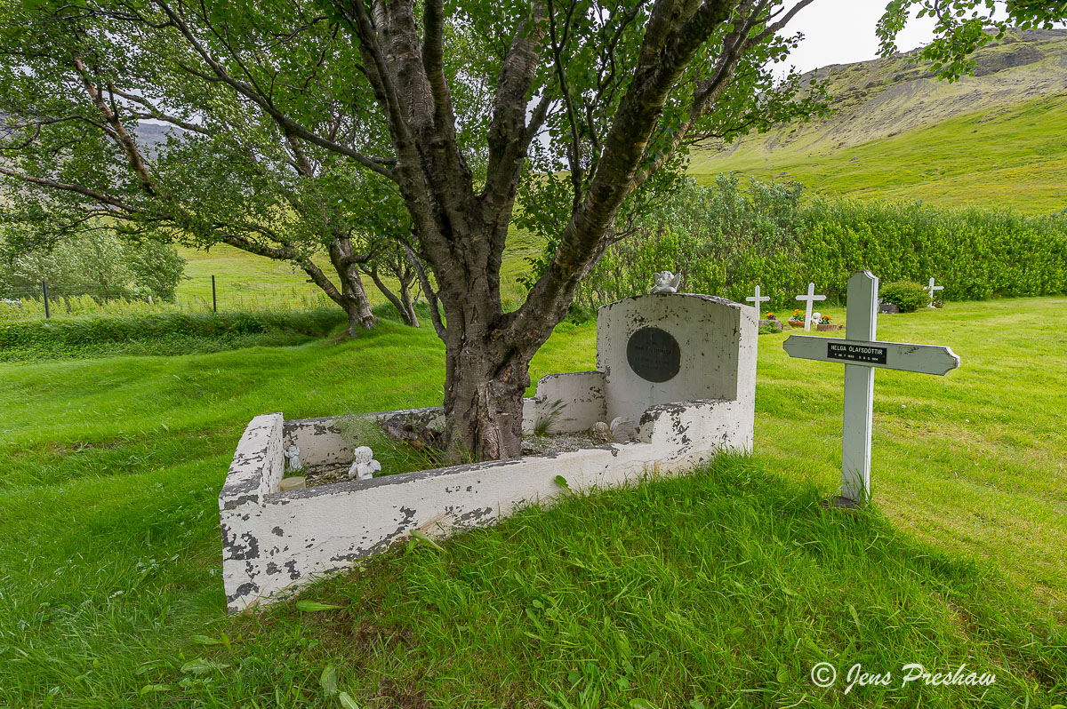 grave, graveyard, tree, South Iceland, summer , photo