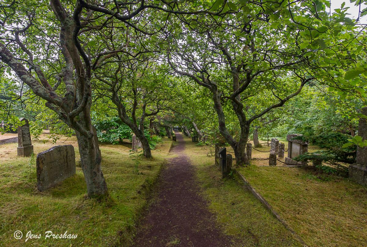 cemetery, graveyard, headstones, moss, Torshavn, Streymoy, Faroe Islands, summer, photo