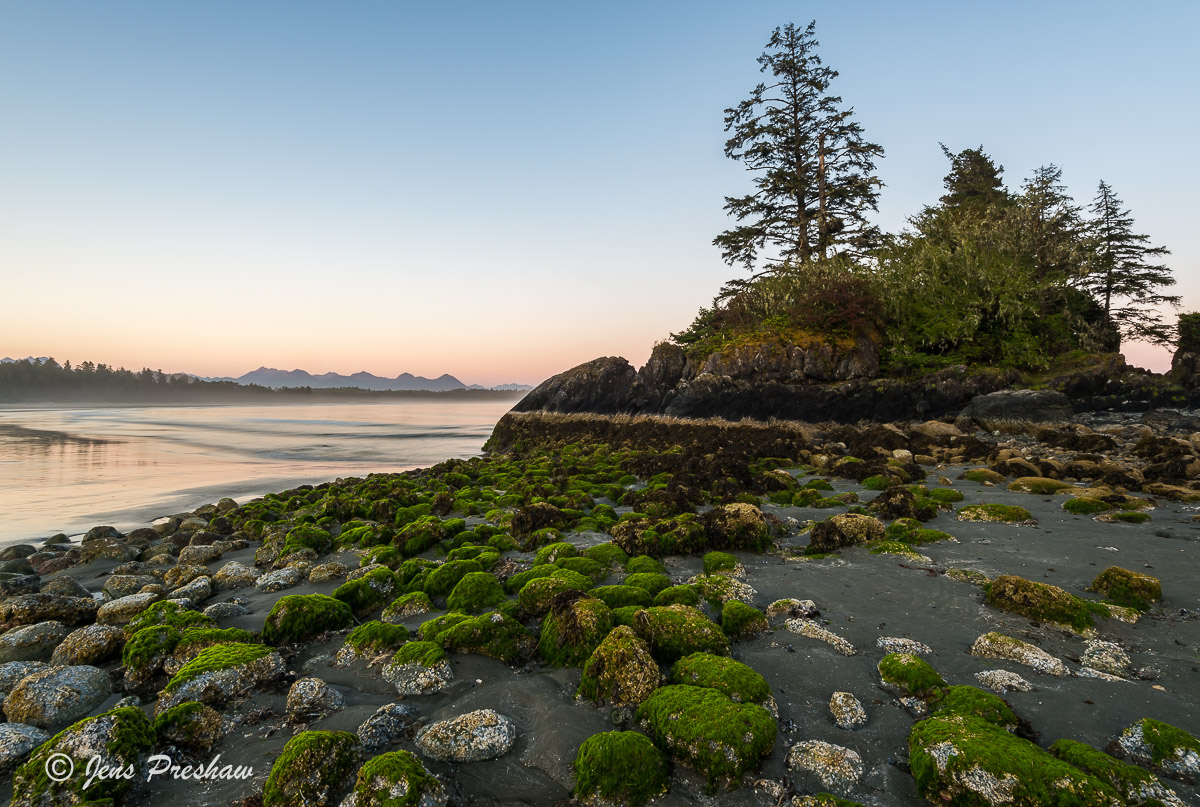 green algae, beach, low tide, Long Beach, Pacific Rim National Park, Vancouver Island, British Columbia, Pacific ocean, Canada, summer, sunset, photo