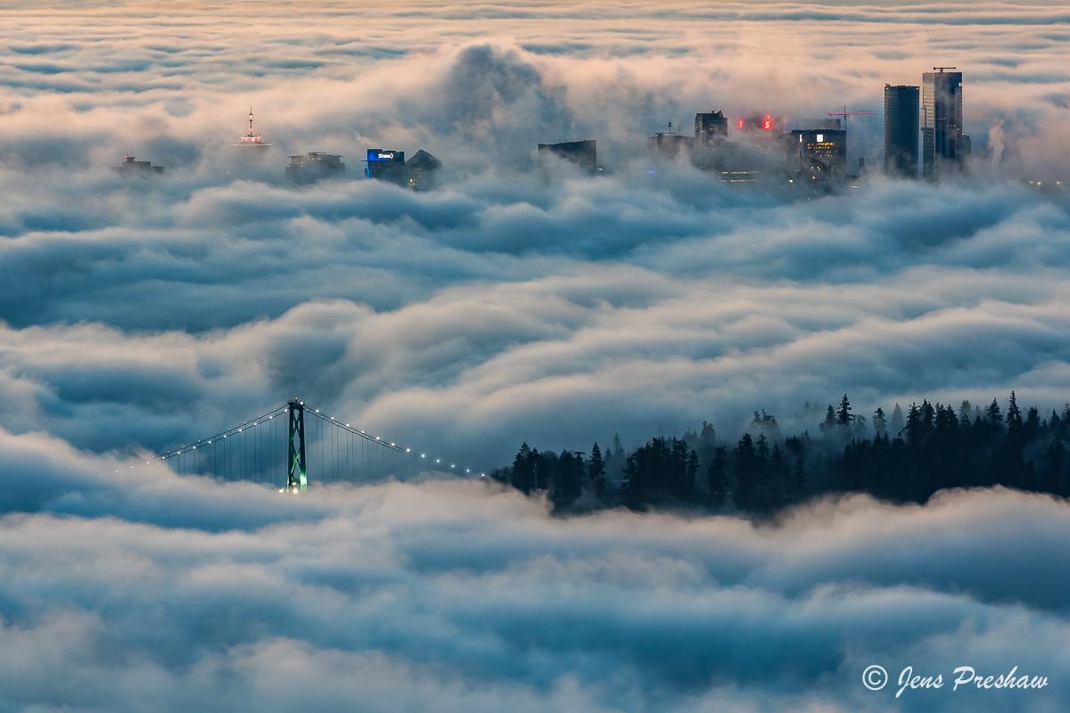 fog, Lions Gate bridge, Stanley Park, buildings, downtown Vancouver, British Columbia, Canada, sunrise, winter, photo