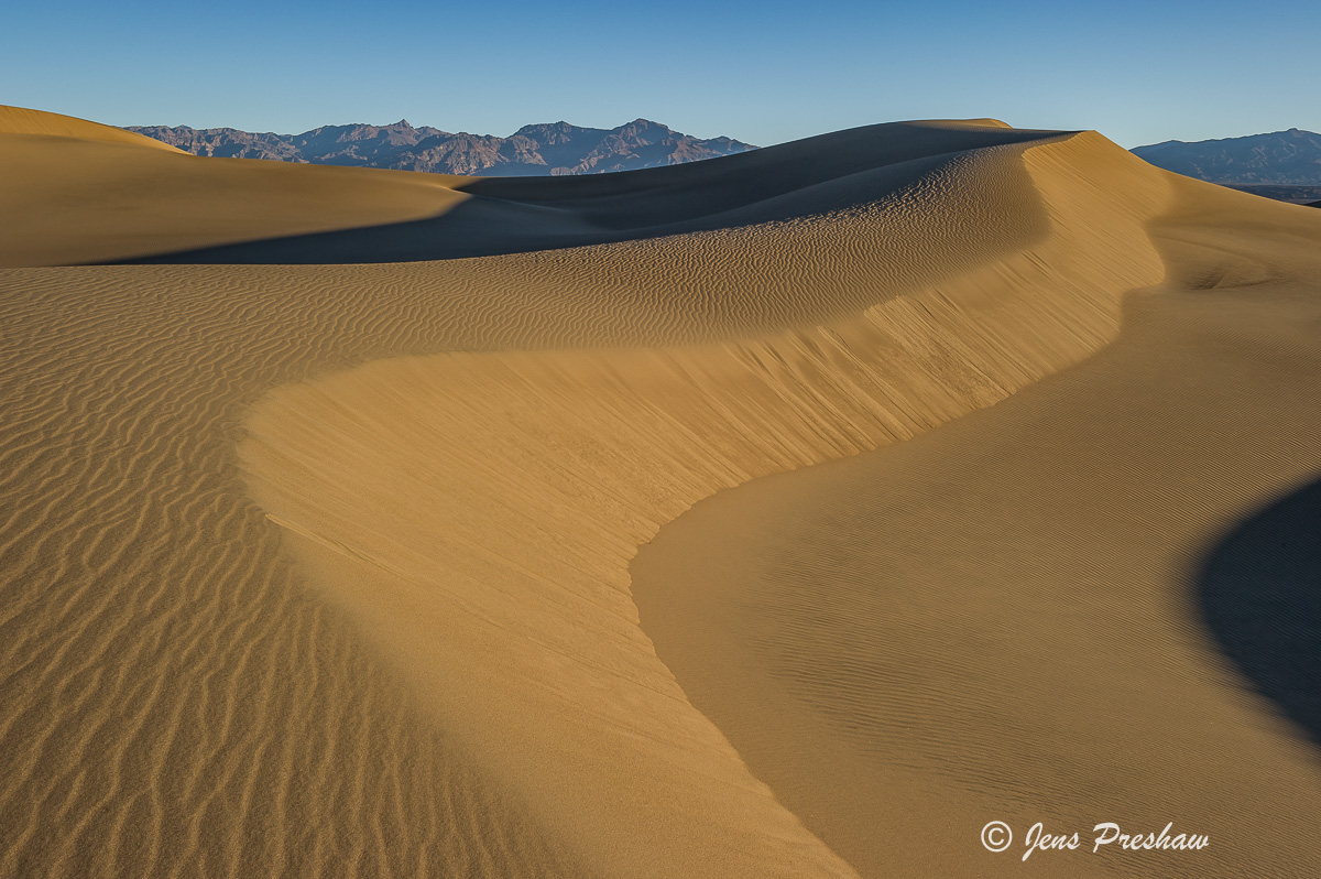 Mesquite Flat Sand Dunes, Stovepipe Wells, Death Valley National Park, Sunrise, California, USA, photo