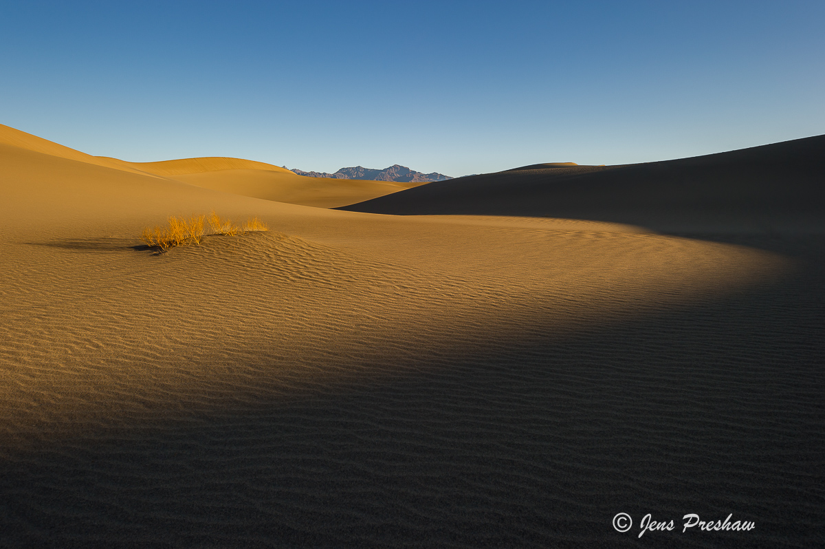 sunset, Mesquite Flat Dunes, Stovepipe Wells, Death Valley National Park, California, United States of America, winter, photo