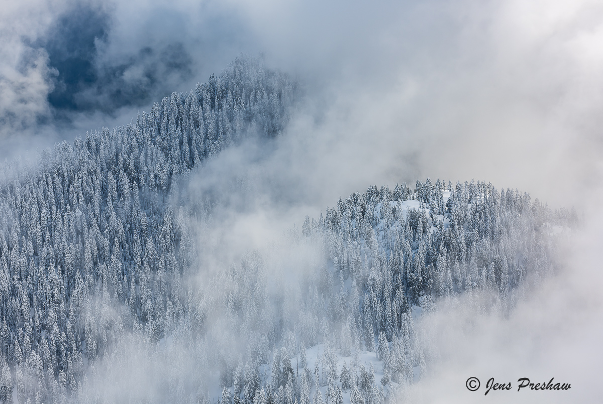Clouds, Trees, Mount Seymour Provincial Park, Snowfall, Coast mountains, British Columbia, Canada, Winter, photo